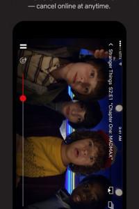 Netflix screen 5